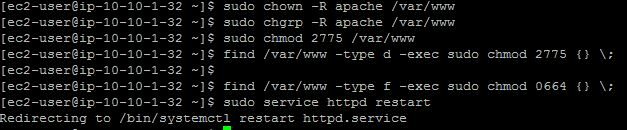 Set Apache permissions on /var/www directory