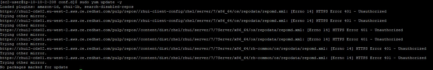 Update error on Red Hat 7 with HTTPS 401